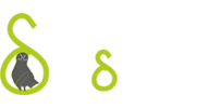 diadrasis logo
